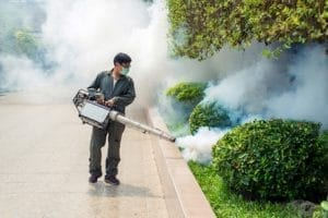 Man smoking pests — Pest Control in Winnellie, NT